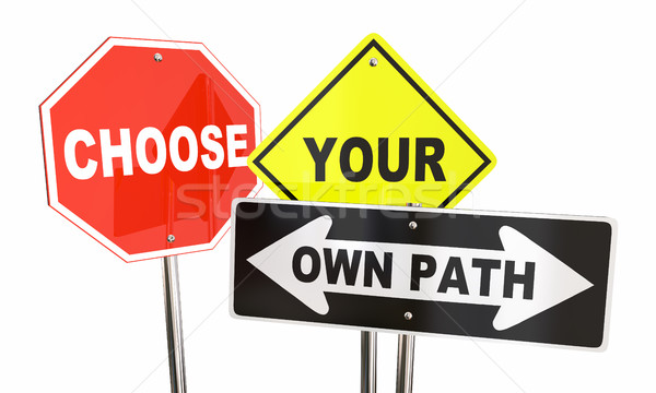 Choose Your Own Path Decide Which Way Signs 3d Illustration Stock photo © iqoncept
