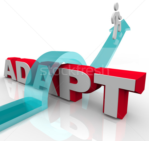 Adapting to Challenging and Overcoming Obstacle to Change Stock photo © iqoncept
