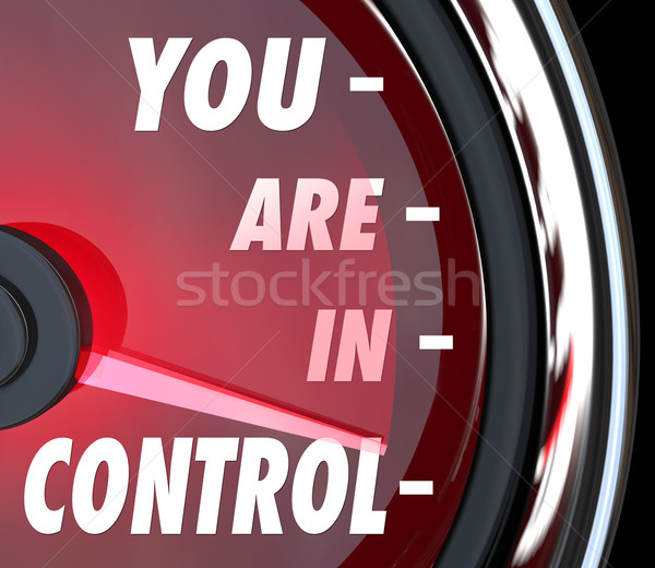 You Are In Control Power Strength Dominate Manage Your Future Stock photo © iqoncept