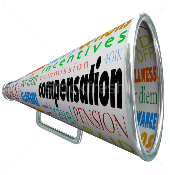 Compensation Bullhorn Megaphone Salary Pay Benefits Stock photo © iqoncept