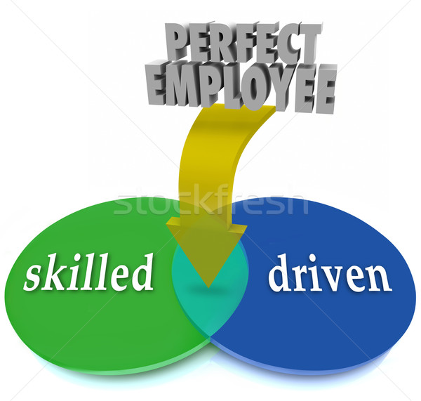 Perfect Employee Venn Diagram Skilled Driven Workers Personnel Stock photo © iqoncept