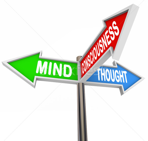 Three Principles Mind Consciousness Thought Arrow Signs Stock photo © iqoncept