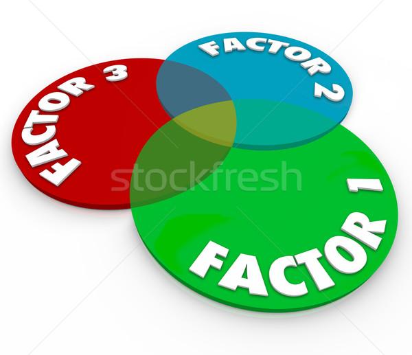 фактор диаграмма слов Круги Сток-фото © iqoncept