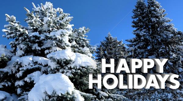 Szczęśliwy wakacje christmas zimą śniegu drzew Zdjęcia stock © iqoncept