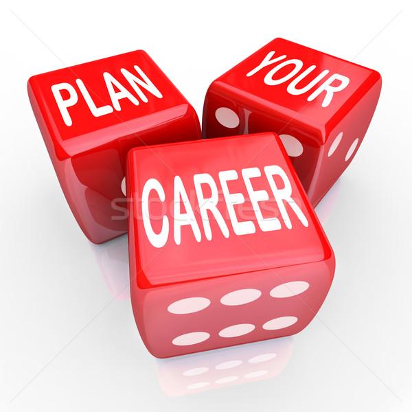 Terv karrier kocka hazárdíroz jövő alkalom Stock fotó © iqoncept