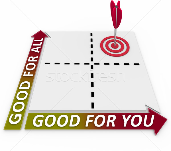 Good for You and for All Matrix Choose Priorities Stock photo © iqoncept
