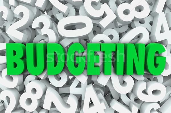 Költségvetést készít 3D szó számok pénzügyi pénz Stock fotó © iqoncept