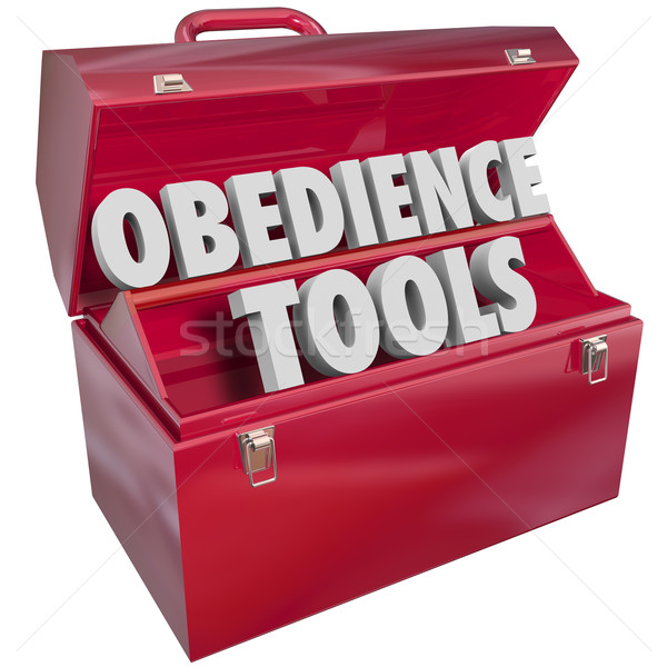 Obedience Tools Toolbox Resources Teaching Respect Authority Stock photo © iqoncept