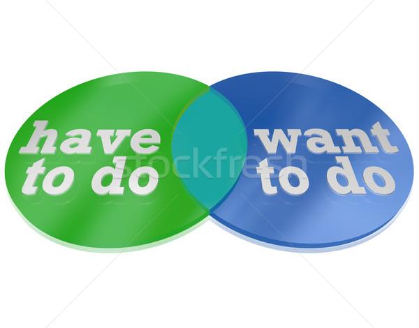What Do You Have Vs Need to Do Venn Diagram Decision Stock photo © iqoncept