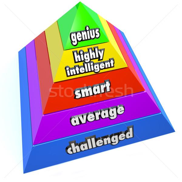 Genie verstand niveau piramide stappen lezing Stockfoto © iqoncept