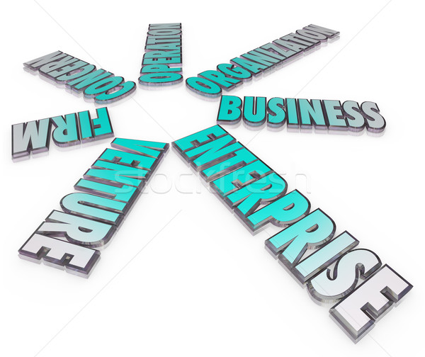 Enterprise Business Company 3D Words Firm Venture Stock photo © iqoncept