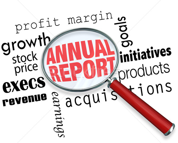 Annual Report Magnifying Glass Words Research Financial Filing Stock photo © iqoncept