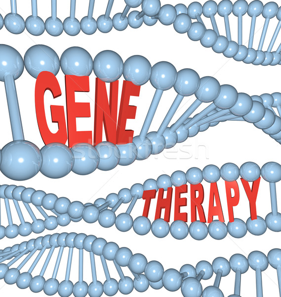Gene Therapy - Words in DNA Stock photo © iqoncept