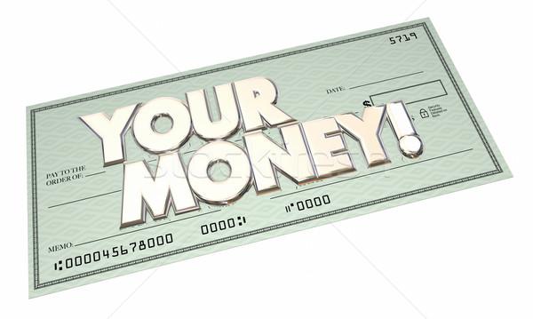 Geld überprüfen Bezahlung Einkommen Ertrag Reichtum Stock foto © iqoncept