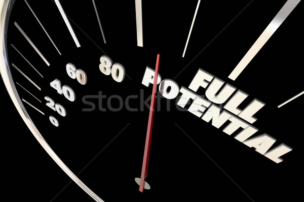 Full Potential Reach Maximum Possible Speedometer Words 3d Illus Stock photo © iqoncept