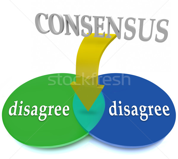 Consensus Venn Diagram Two Opposing Views Disagree Agreement Stock photo © iqoncept