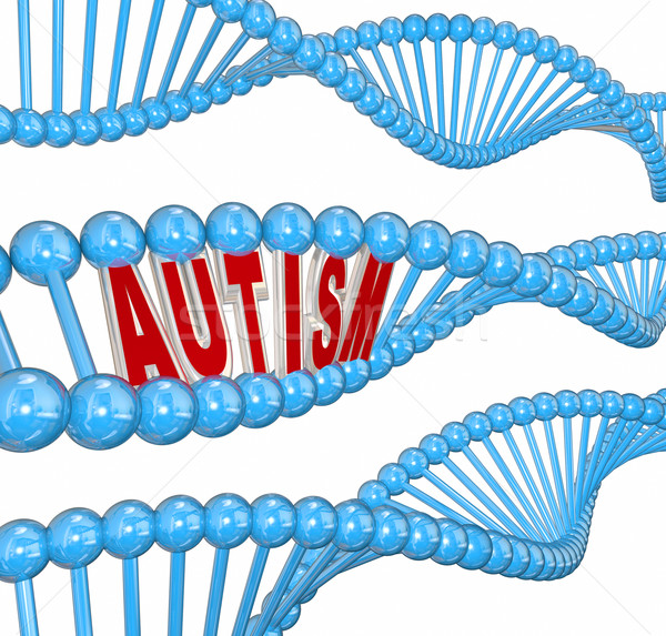 Autism 3d Word DNA Genes Disorder Brain Learning Condition  Stock photo © iqoncept