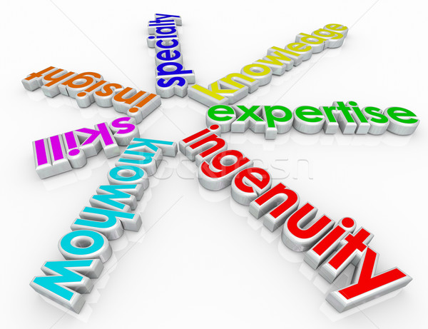 Ingenuity Specialty Skill Insight Knowhow 3d Words Background Stock photo © iqoncept
