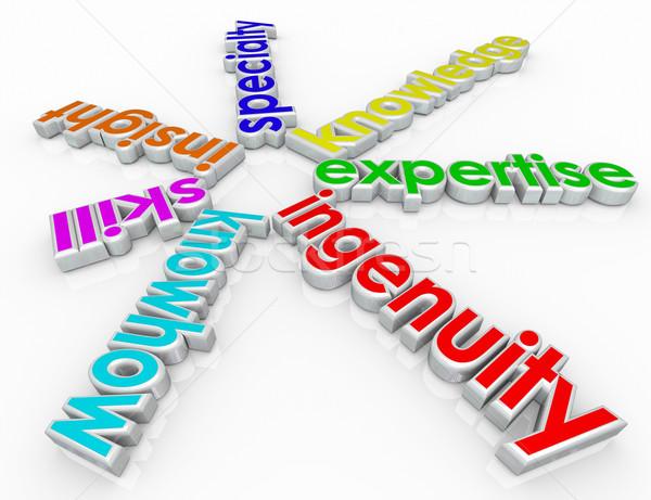 Specialitás képesség éleslátás 3D szavak spirál Stock fotó © iqoncept