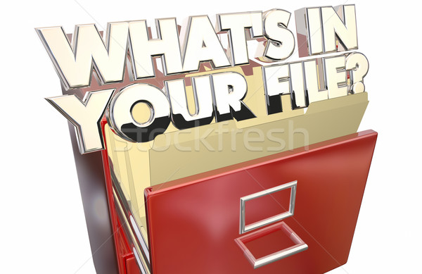 Whats In Your File Personal Information Data Private Stock photo © iqoncept