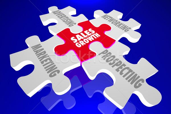 продажи роста маркетинга реклама сетей перспектива Сток-фото © iqoncept