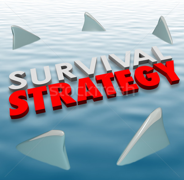 Survival Strategy Danger Shark Fins Plan Problem Solution Reduce Stock photo © iqoncept