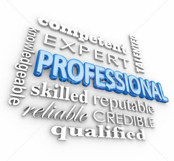 Professional 3d Word Collage Knowledge Reputation Skill Expert R Stock photo © iqoncept