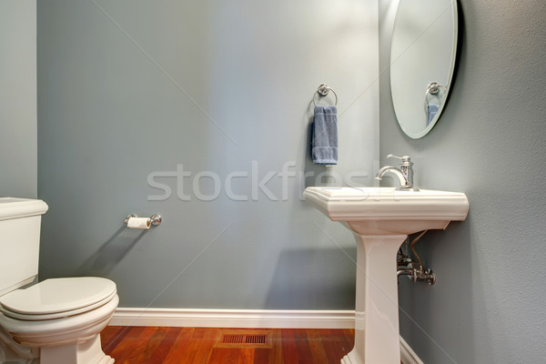 Simple grey bathroom Stock photo © iriana88w