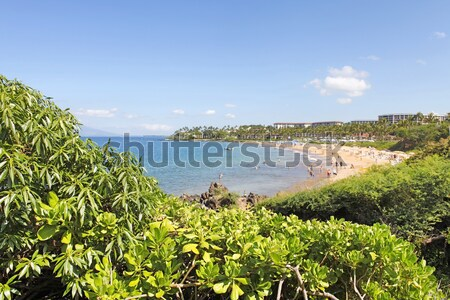 Tropical coast with ocean and island view over the greenery. Mau Stock photo © iriana88w