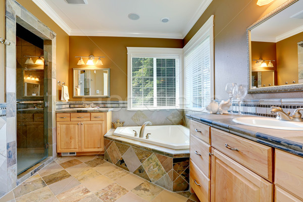 Luxus fürdőszoba belső sarok fürdőkád mustár Stock fotó © iriana88w
