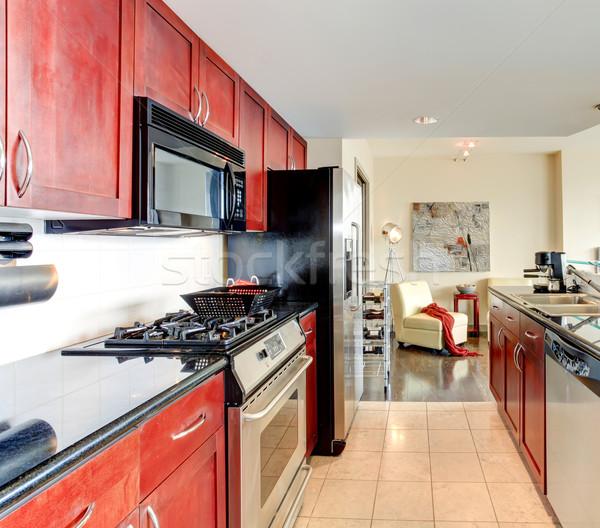 Moderne appartement interieur zwarte keuken heldere Stockfoto © iriana88w