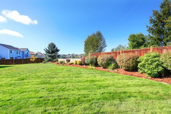 Backyard land with decorative bushes and lawn Stock photo © iriana88w