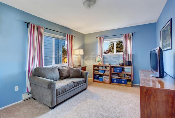 Ikincil oturma odası mavi duvarlar gri kanepe Stok fotoğraf © iriana88w
