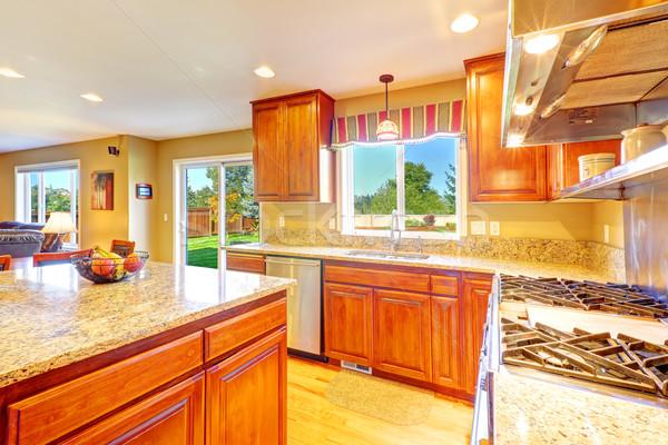 Bright luxury kitchen room with exit to backyard Stock photo © iriana88w