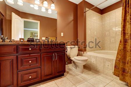 Yeşil banyo iç karanlık kahverengi kibir Stok fotoğraf © iriana88w