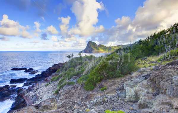 Eiland klif kust lijn oceaan Hawaii Stockfoto © iriana88w