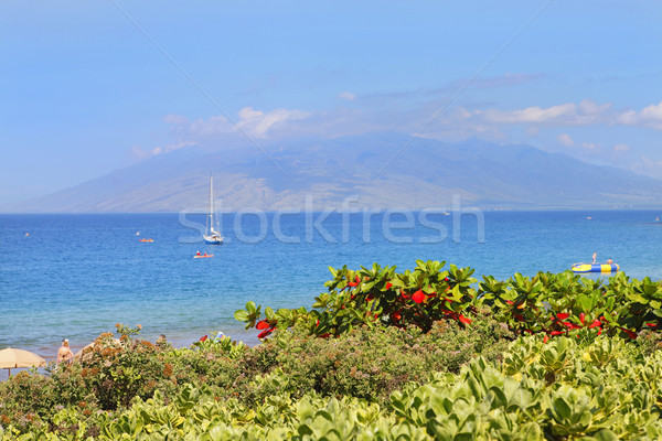 Polo Beach near Fairmont Resort, Maui, Hawaii Stock photo © iriana88w