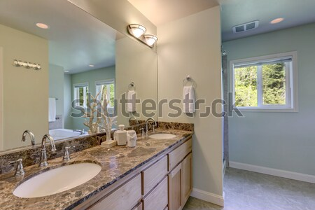 Luxury bathroom with door to master bedroom Stock photo © iriana88w