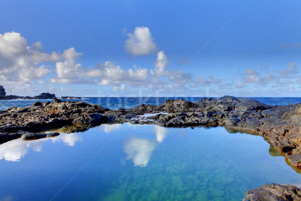 Olivine Pools rocks and ocean.  West Maui, Hawaii Stock photo © iriana88w