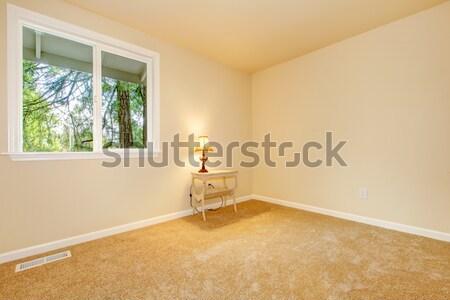 çamaşırhane oda ahşap beyaz yıkayıcı ev Stok fotoğraf © iriana88w