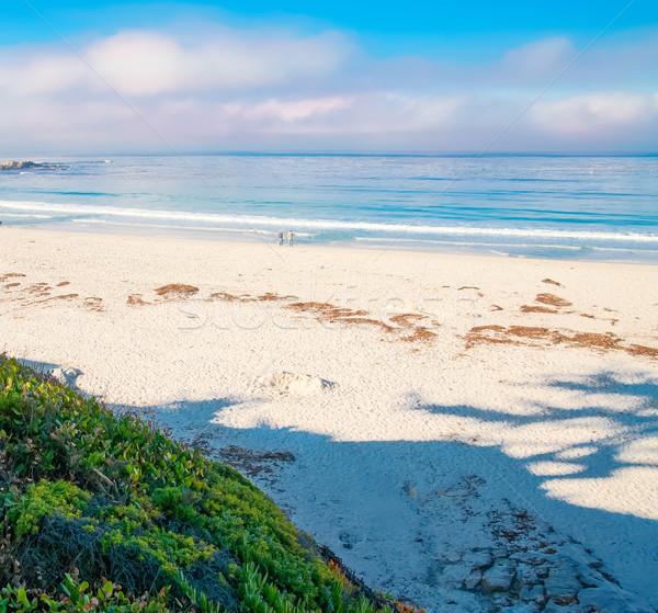 Blue Ocean landscape with white sand Stock photo © iriana88w