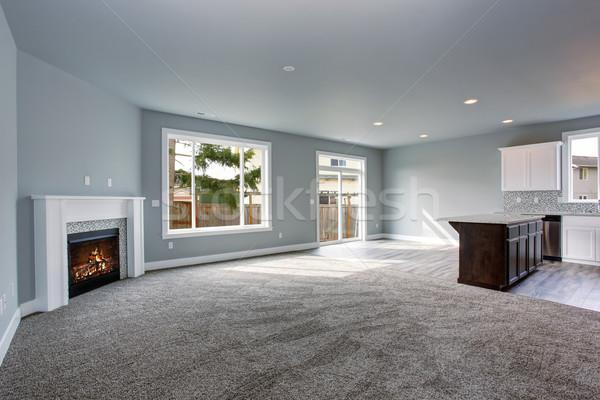 Foto stock: Moderna · gris · interior · casa · sin · amueblar · lujo