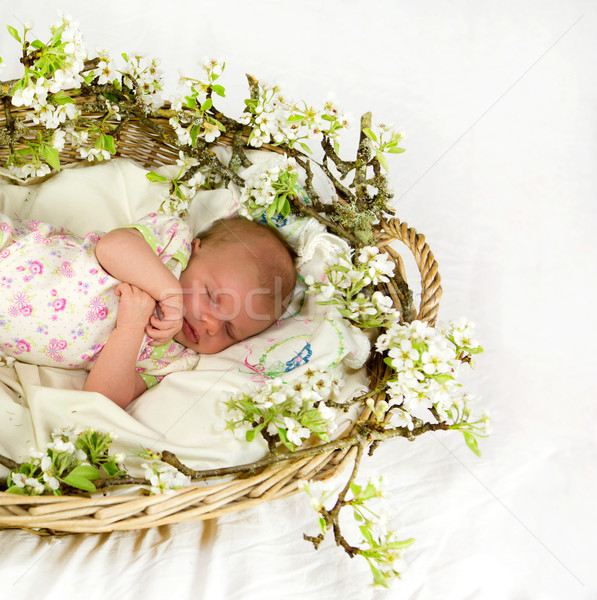 Baby girl inside of basket with spring flowers. Stock photo © iriana88w