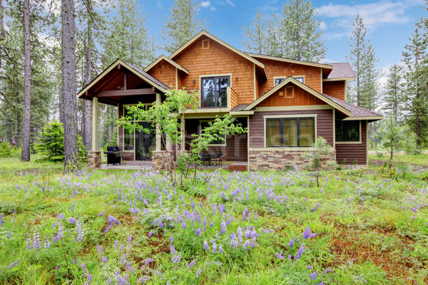Mountain cabin home exterior with forest and flowers. Stock photo © iriana88w