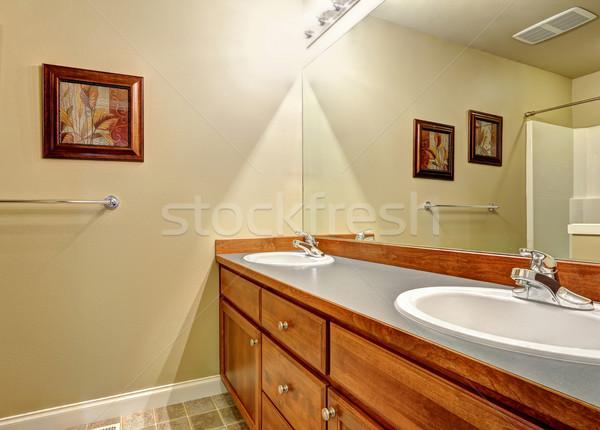 Banyo kibir dolap iki ayna kahverengi Stok fotoğraf © iriana88w