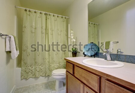 Blue bathroom with tub and shower. Stock photo © iriana88w