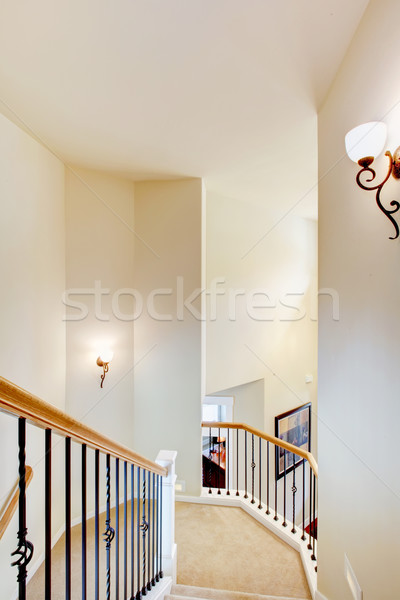 Large staircase with metal railings and beige carpet. Stock photo © iriana88w