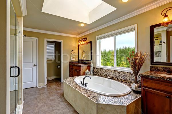 Luksusowe łazienka wnętrza świetlik mozaiki Zdjęcia stock © iriana88w