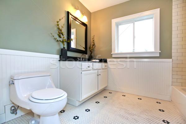 Bathroom interior with white tile, plank wall trim, green walls, Stock photo © iriana88w