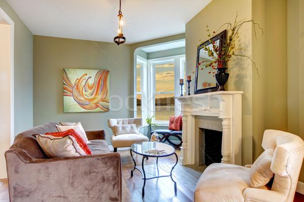 Stock foto: Schönen · eleganten · grünen · Wohnzimmer · weiß · Kamin